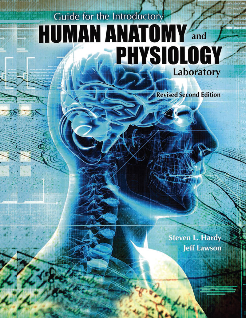 human anatomy and physiology lab manual answers